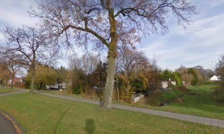Gemeente kan gebiedsverbod Esschenbruggerdijk uitvaardigen