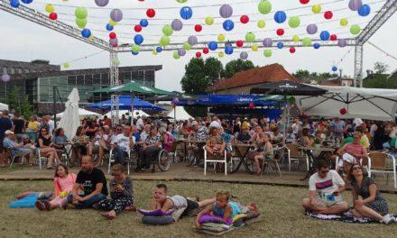 Festival op Weeshuisweide valt zeer in de smaak