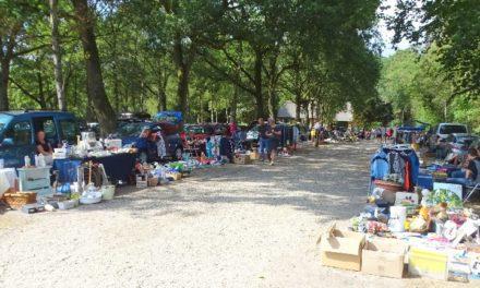 Markt bij Ellert en Brammert is in trek