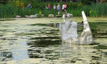Activiteiten in Zuster Mohrpark