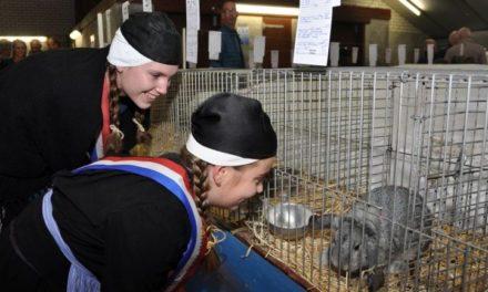 Kleindierententoonstelling staat weer op agenda