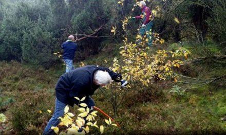 Vrijwilligers gaan aan de slag op Natuurwerkdag
