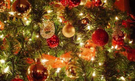 De Schoel houdt kerstmarkt