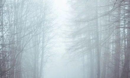 Code rood voor zeer dichte mist