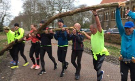 Stormschade in Coevorden en regio (update)