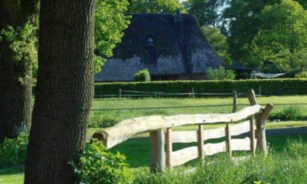 Gees in de race voor titel 'Allermooiste dorp'
