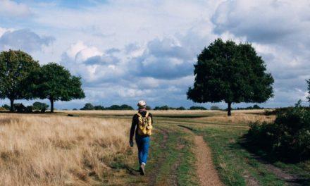 Uitrol wandelknooppunten in de regio