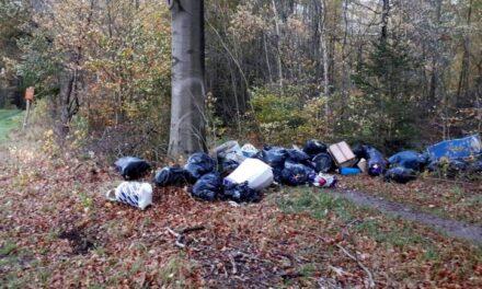 Weer spullen gedumpt in bosgebied