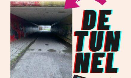 Ossehaar kan stemmen op ontwerp tunnel