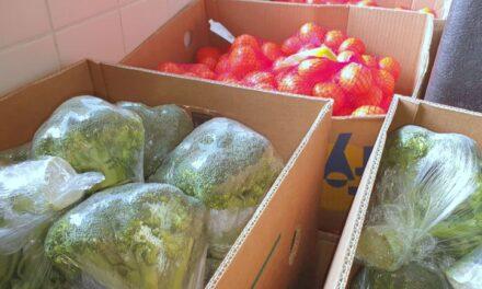 Rotary voorziet Voedselbank van verse groente en fruit